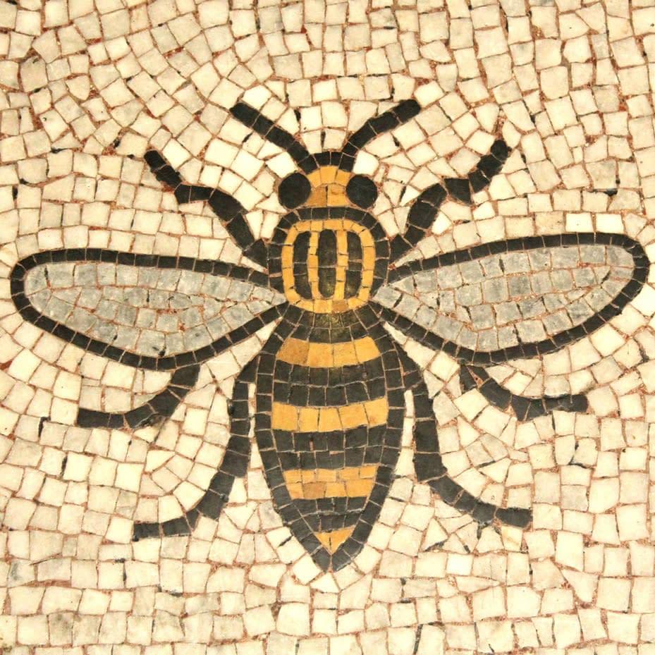 PLan Bee Team Building